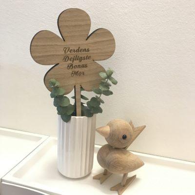 Smørblomst egetræ 27 cm