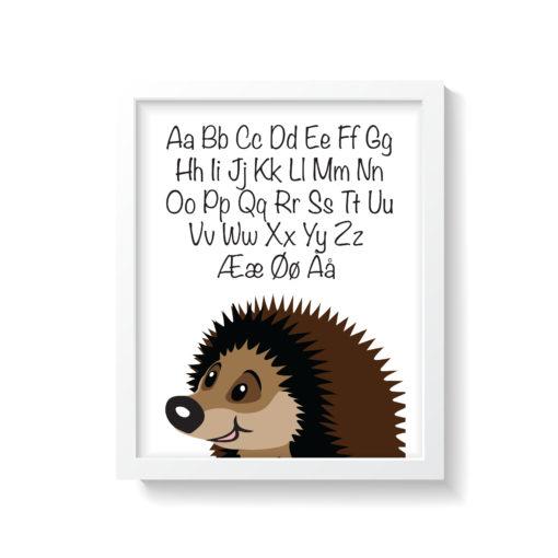 pindsvin plakat med alfabet i hvid ramme