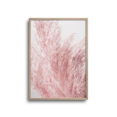 plakat af lysserød blomt