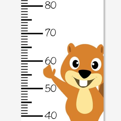 Højdemåler egern m navn (zoom)