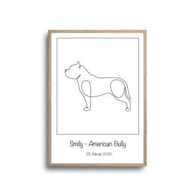 American bully plakat