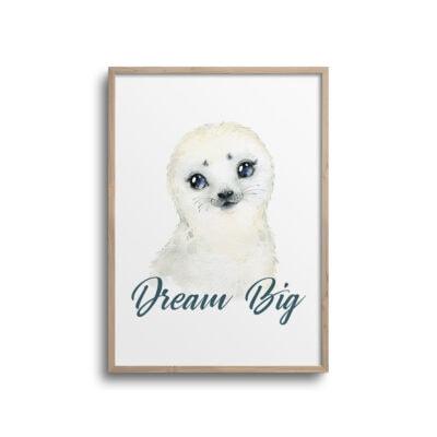 Søløve plakat med citat Dream Big på hvid væg